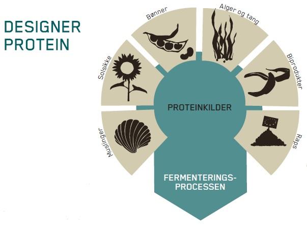 Designer protein 240414